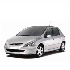 Чип за Peugeot 307