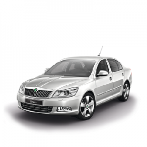 Chip for Skoda Octavia II 1Z