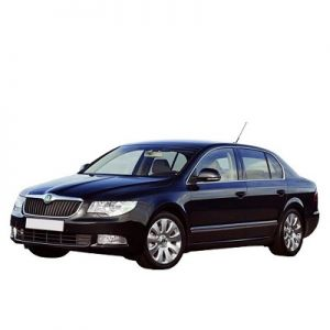 Chip for Skoda Superb II