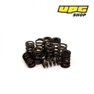 Peugeot 206 GTI - Piper Cams Valve Springs (solid followers)
