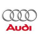 Chip for Audi A3 8L